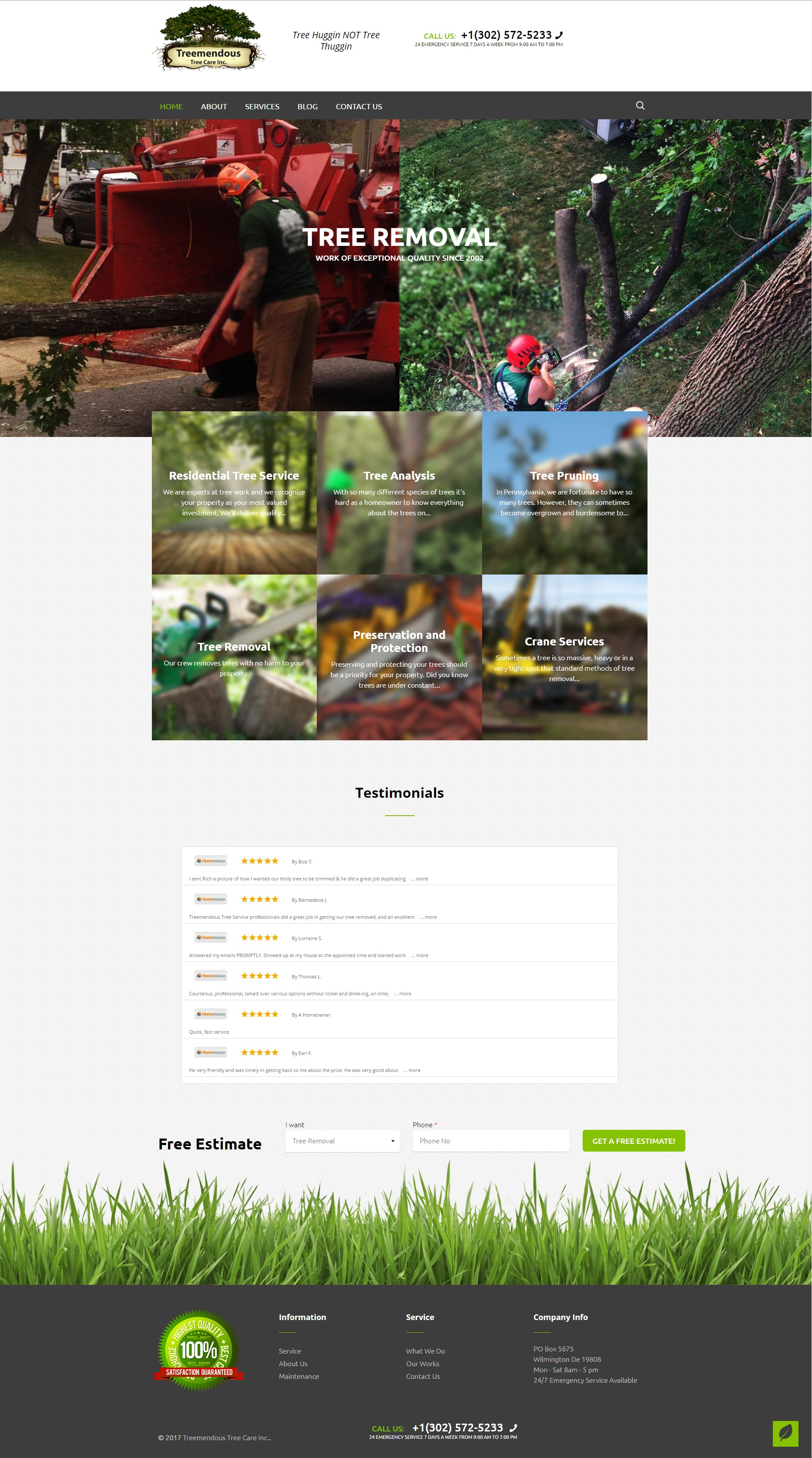 Tree Service Website Development - Treemendous Tree Services Lite.jpg